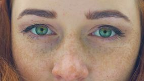Freckled face of red haired woman with green eyes extreme close-up blink slow. Stock footage stock footage