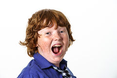 Freckled red-hair boy Royalty Free Stock Images