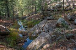 Fred Haught Trail #141 Royalty Free Stock Photos