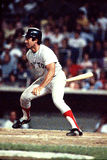 Fred Lynn Stock Image