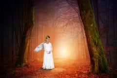 Fred natur, förälskelse, ängel, flicka arkivbilder