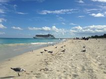 Free Fred. Olsen Cruise Lines Ship Departing Miami. Stock Photo - 60695490