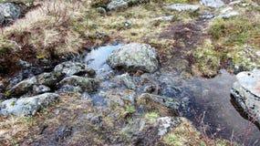 Fred på berget Royaltyfria Bilder