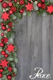 Fred på jul arkivfoto