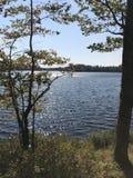 Fred på sjön från fotvandra arkivfoton