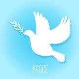 Fred som dykas med den olivgröna filialen vektor illustrationer