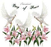 Freddagen, duva med världen med liljor blommar, vektorillustr Arkivbilder