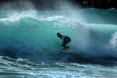 Freddie ängar surfar i en trumma Royaltyfria Bilder