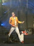 Freddie Mercury Tribute Arkivbild