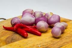 Freddo e cipolle pronti per il cuoco Fotografia Stock