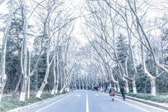 Freddo a Nanchino immagini stock libere da diritti