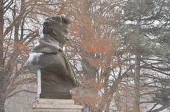 Frederic Chopin Image stock