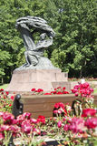 Frederick Chopin. Royalty Free Stock Images