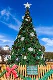 FREDERICKSBURG,得克萨斯2017年11月19日:Fredericksburg社区在Marktplats集市广场安装的圣诞树在sunn 免版税库存照片