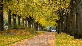 Frederiksberg, Dalgas Bulevard em Dinamarca Imagem de Stock