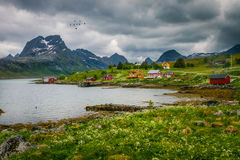 Fredvang on the Lofoten. In Norway Royalty Free Stock Image