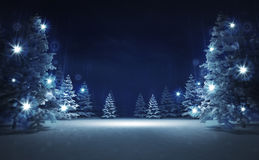 Free area in winter glittering magic woods Royalty Free Stock Photo