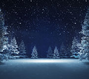 Free area in winter snowy woods. Blue seasonal landscape background 3D illustration Royalty Free Stock Photography