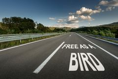 Free Free As A Bird Message On Asphalt Highway Road Through The Countryside Royalty Free Stock Photo - 132368405