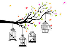 Free birds and birdcages, vector Royalty Free Stock Photos