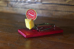 Free cheese. Royalty Free Stock Photography