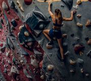 Free climber female bouldering indoors. Back view Stock Images