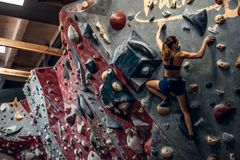 Free climber female bouldering indoors. Back view Royalty Free Stock Image