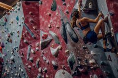 Free climber female bouldering indoors. Back view Stock Image