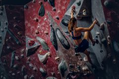 Free climber female bouldering indoors. Back view Royalty Free Stock Images
