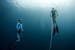 Free diver Stock Photos