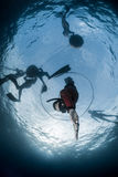 Free diver descending to the depht Stock Photography