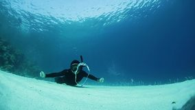 Free diver stock video footage