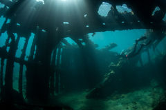 Free Diver and Shipwreck Royalty Free Stock Photo