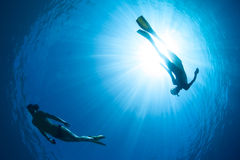 Free diver. Underwater shot of the couple gliding in depth of tropical sea at sunny day Royalty Free Stock Image