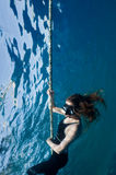 Free diving girl Stock Images