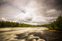 Free Flowing River in Sweden Royalty Free Stock Photos