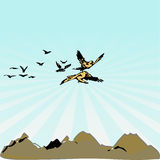 Free Flying Birds. A scalable vector illustration of large birds flying over a mountain range royalty free illustration