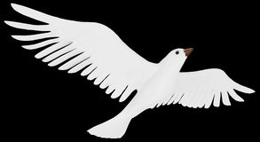 A free flying white dove. Stock Photography