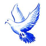 Free flying white dove isolated, watercolor illustration Royalty Free Stock Photo