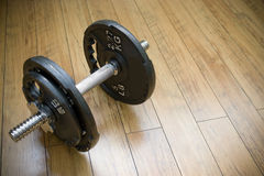Free Freight Dumbells Royalty Free Stock Photos