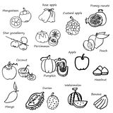 Free hand drawing of fruit and vegetables vector on white background Stock Image