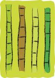 Free hand drawn bamboo tree Stock Photo