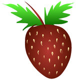Free Hand Sketch of Strawberry Vector royalty free illustration