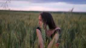 Beautiful girl in dress walking in through field touching wheat ears at sunset. stock video