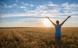 Free Happy Woman Enjoying Nature and Freedom Outdoor. Woman with arms outstretched in a wheat field in sunset. Stock Photos