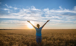 Free Happy Woman Enjoying Nature and Freedom Outdoor. Woman with arms outstretched in a wheat field in sunset. Royalty Free Stock Image