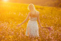 Free happy woman. Enjoying nature. Toned in warm colors Stock Photos