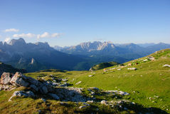 Free horses in the Dolomites Stock Photography