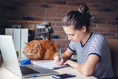 Free lance della studentessa che lavorano con il computer portatile a casa dal windo Fotografia Stock Libera da Diritti