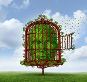 Free The Mind. Freedom of the mind concept as a tree in the shape of a human head trapped by branches shaped as an open  birdcage or bird cage for personal Stock Images